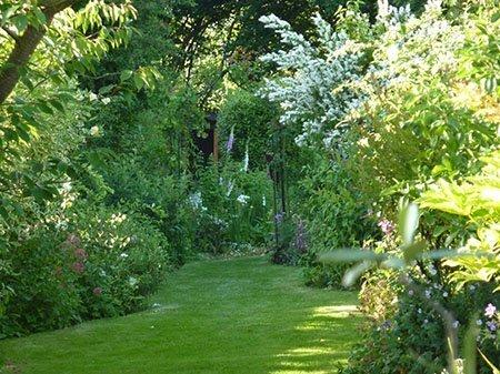 Oakleigh 450 - The National Garden Scheme - Find An Open Garden In Surrey