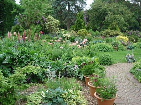 Shieling 450 - The National Garden Scheme - Find An Open Garden In Surrey