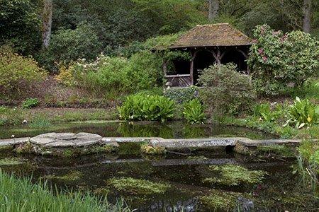The Manor House 450 - The National Garden Scheme - Find An Open Garden In Surrey